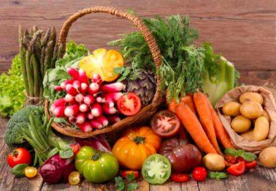 Vom Hype zum Handwerk: Vegan Reisen – Urlaub mit Wohlfühlgarantie