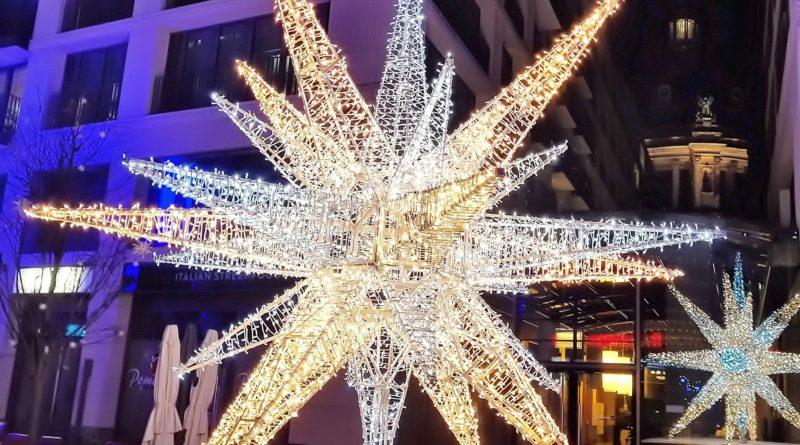 Weihnachtsstern mit Berliner Dom